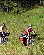 Ferien Rügen Fahrrad Tour